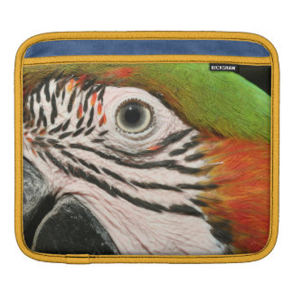ipadの場合の袖の道化師のコンゴウインコのオウムの鳥の目 iPadスリーブ