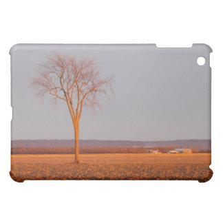 iPadの場合--ニレの日没 iPad Miniカバー