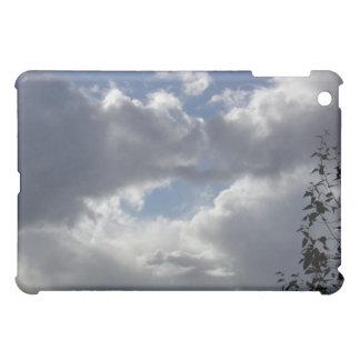 iPadの箱を曇らせます iPad Miniカバー