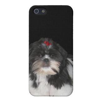 iPhoneの場合のシーズー(犬)のTzu犬 iPhone 5 カバー