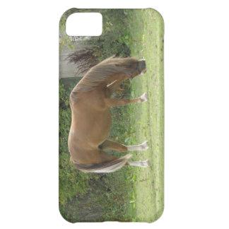iPhoneの場合を牧草を食べているクリのブラウンの馬 iPhone5Cケース