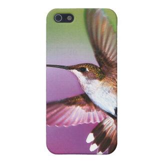 """iphone4場合はハチドリを""""大事にします"""" iPhone 5 case"""