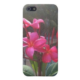 iphone4 Franjipaniカバー2 iPhone 5 Case