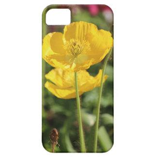iPhone -開花の黄色いケシ iPhone SE/5/5s ケース