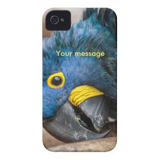 iphone 4ケースの青いHyacinthのコンゴウインコのオウム Case-Mate iPhone 4 ケース