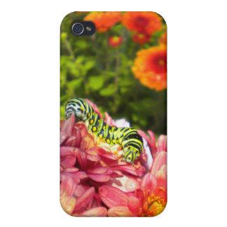 iphone 4ケースを日に晒す幼虫 iPhone 4/4S cover