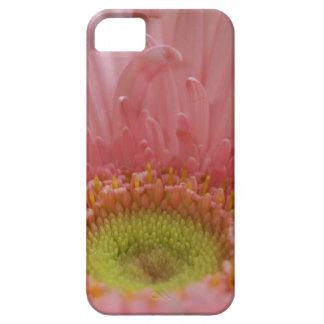 iPhone 5の場合のピンクのガーベラのデイジー iPhone SE/5/5s ケース