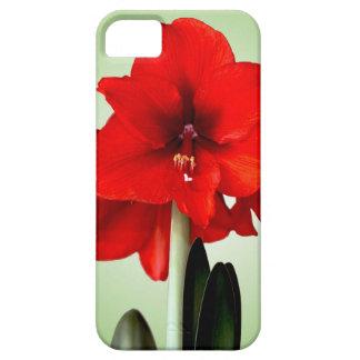 iPhone 5の場合の赤のアマリリス iPhone SE/5/5s ケース