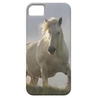 iphone 5の場合の馬 iPhone SE/5/5s ケース