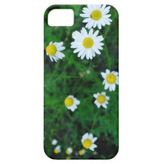 iPhone 5/5Sの場合のデイジーの花 iPhone SE/5/5s ケース