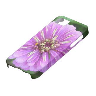 iPhone 5/5Sの場合-自然な薄紫の《植物》百日草 iPhone SE/5/5s ケース