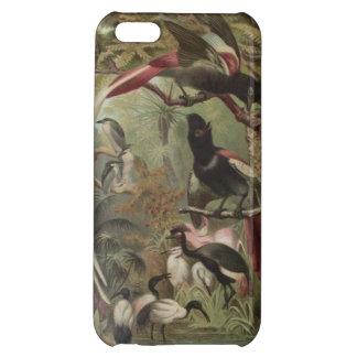 iPhone 5Cのための熱帯鳥の電話箱 iPhone 5C カバー
