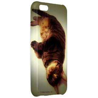 iPhone 5cケース-概要Tso、色 iPhone5Cケース