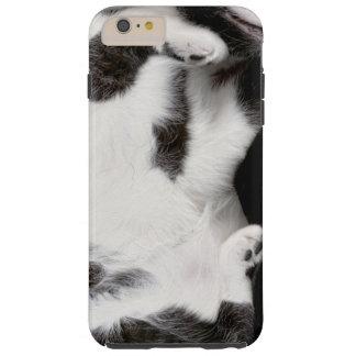 iPhone 6Plusの場合(blk&wht)のための愛らしい猫のラッパー Tough iPhone 6 Plus ケース