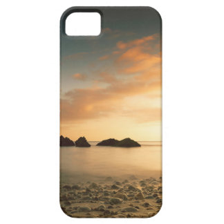 iPhone SE/5/5s ケース