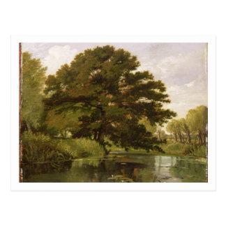 Isis、Waterperry、オックスフォードシャー1806年(油 ポストカード