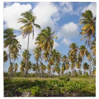 Isla Saonaのビーチのヤシの木 ナプキンクロス