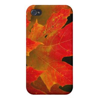 Itascaの州立公園、紅葉2 iPhone 4 Case