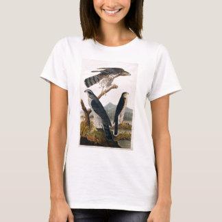 J.J. Audubon (オオタカ、スタンリーのタカ) (1829年) Tシャツ
