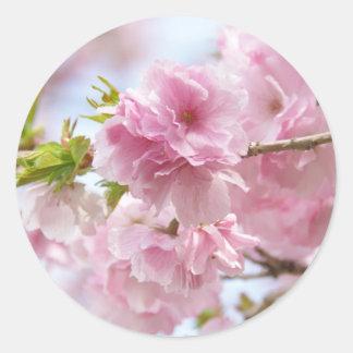 Japanese cherry blossoms ラウンドシール