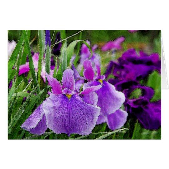 japanese iris カード