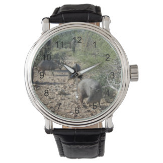 Javelina 腕時計