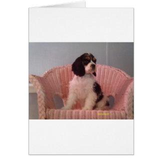 Jennaの三アメリカン・コッカー・スパニエルの子犬 カード