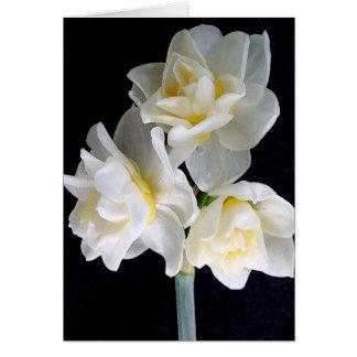 Jonquilの花- Ecclesiastesの3:1 カード