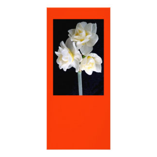 Jonquilの花- Ecclesiastesの3:1 ラックカード