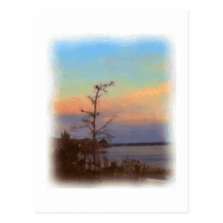 Joppaの平たい箱の郵便はがきの日の出 ポストカード