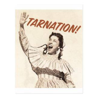 Judyカノーバ- Tarnation.Shirt ポストカード