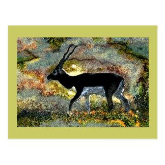 Junglewalk.comからのBlackbuckのカモシカ ポストカード