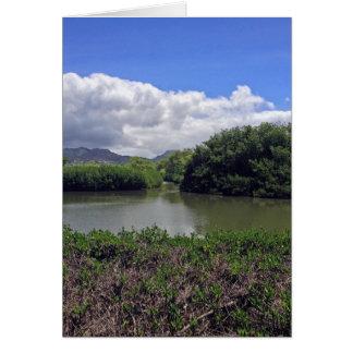 Kahauikiの流れ カード
