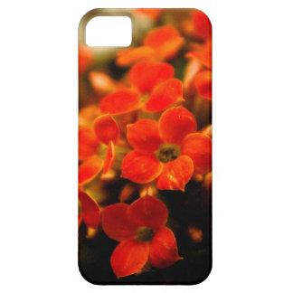 Kalanchoeによっては花束iPhone5の箱が開花します iPhone SE/5/5s ケース