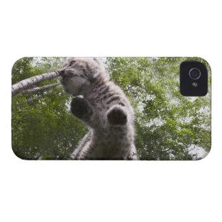 kalispell、モンタナ、米国 iPhone 4 Case-Mate ケース