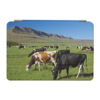 Kambergの谷の牛、Kwazulu出生の2 iPad Miniカバー