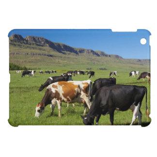Kambergの谷の牛、Kwazulu出生の2 iPad Miniケース