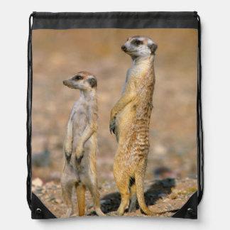Karas、Meerkat (Suricata Suricatta)の歩哨 ナップサック