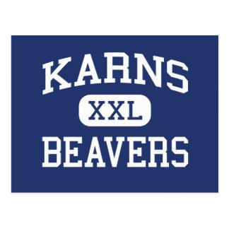 Karns -ビーバー-高Knoxvilleテネシー州 ポストカード