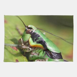 katydidのコオロギのEupholidopteraのchabrieri キッチンタオル