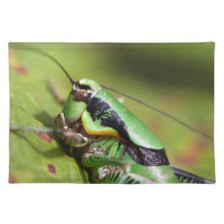 katydidのコオロギのEupholidopteraのchabrieri ランチョンマット