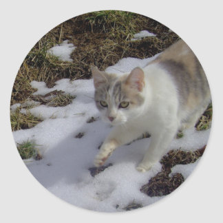 Katze ラウンドシール