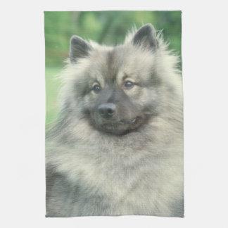 Keeshond犬の台所タオル キッチンタオル