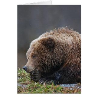 Kenai NWRのアラスカのヒグマ カード