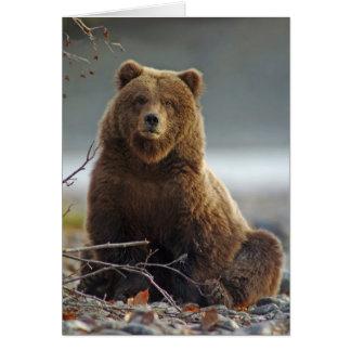 Kenai NWR、アラスカのアラスカのヒグマ カード