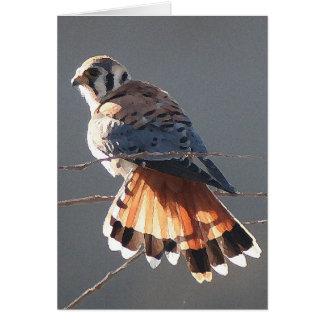 Kestralの鳥の野性生物動物の猛禽の沼地 カード