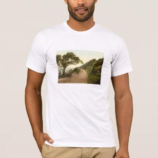 Kewstokeの道、Weston極度ロバ、イギリス Tシャツ