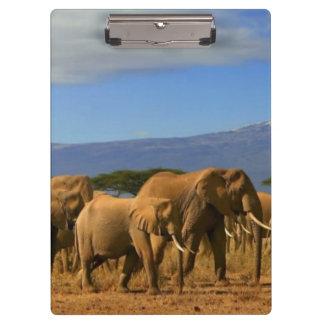 Kilimanjaroおよび象 クリップボード