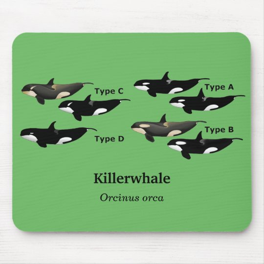 Killerwhale , Orcinus orca マウスパッド
