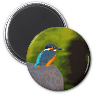 kingfisher マグネット
